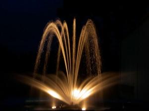 peldoša strūklaka ar apgaismojumu